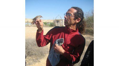 SFCC professor Lenny Gannes, Ph.D., gets a close-up view of a warbler.