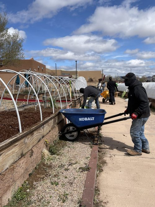 GYO (Grow Your Own) employees help with planting.