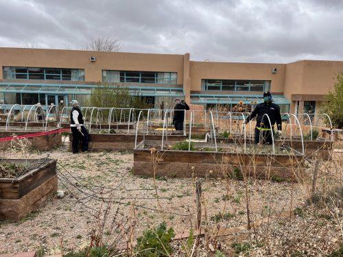Micaela Deaton, Brett Fraenglass and Stephen Gomez, Ph.D. work in garden.