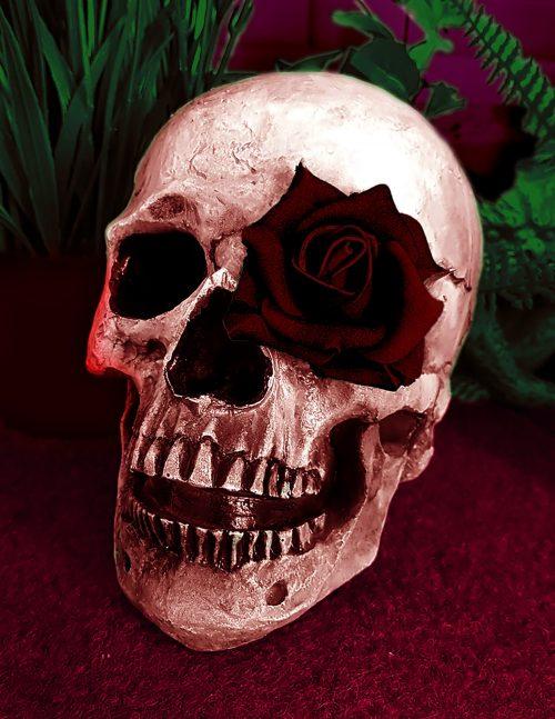 Honorable mention:  Skull Rose, Nehemiah Martinez